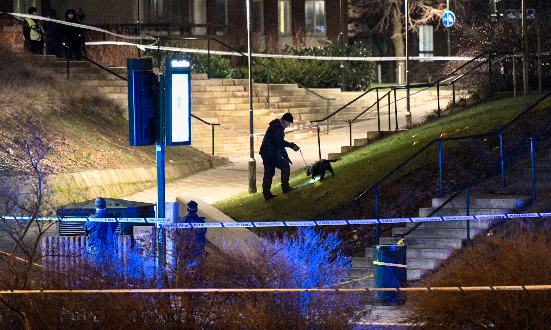 ÅSTEDET: Politi med hund drev torsdag kveld søk ved åstedet der Ahmed (16) ble funnet skutt.