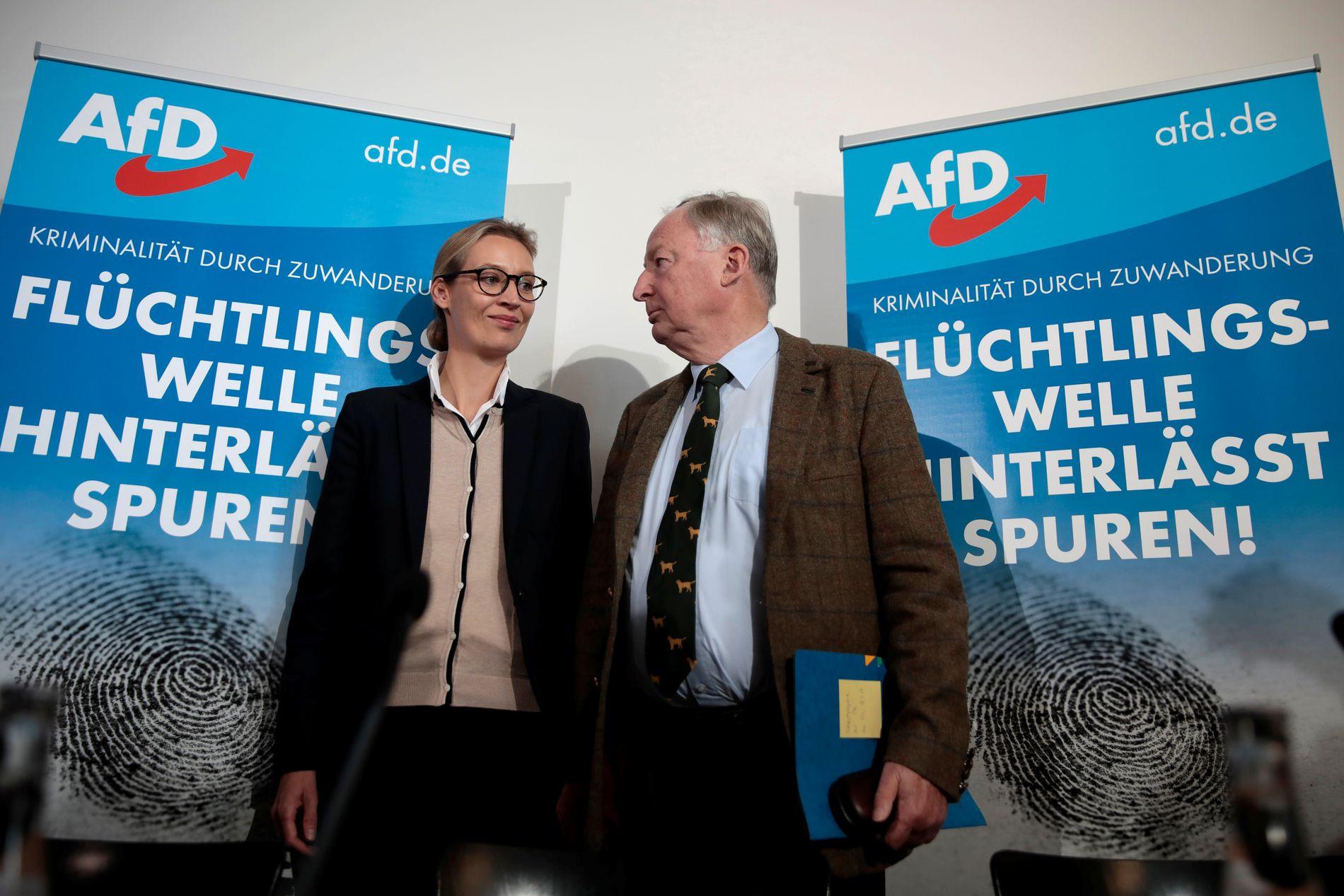 KONTROVERSIELLE UTTALELSER: AfD kan bli tysklands tredje største parti. Toppkandidatene er Alice Weidel og Alexander Gauland. Sistnevnte kom i september med et kontroversielt utsagn.