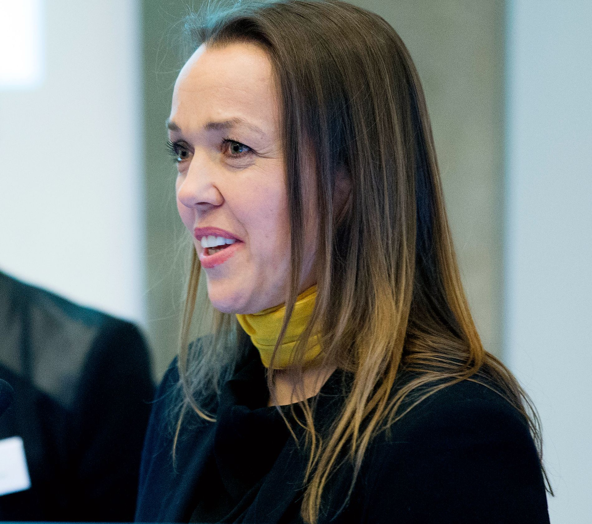 FØRST UT: Bodil Jenssen Houg var landets første mobbeombud. 1. januar har hun vært mobbeombud i Buskerud i fem år.
