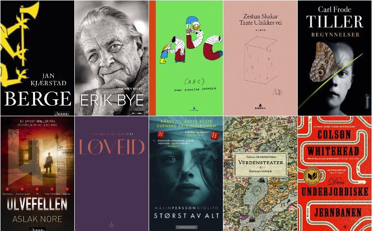 BEST I 2017: Her er noen av VG-anmeldernes bokfavoritter fra 2017.
