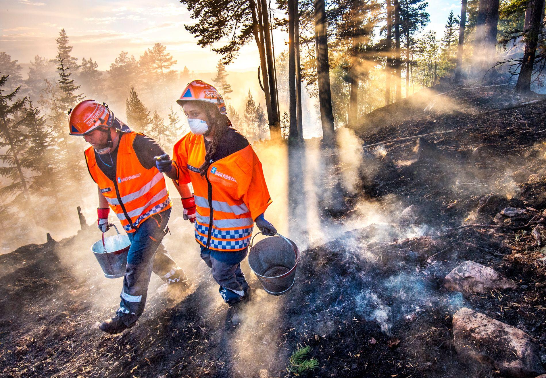 SKOGBRANN: Sivilforsvaret over hele landet har vært aktiv i slukking av skogbranner denne sommeren. Her ved Elgsjø på Notodden.