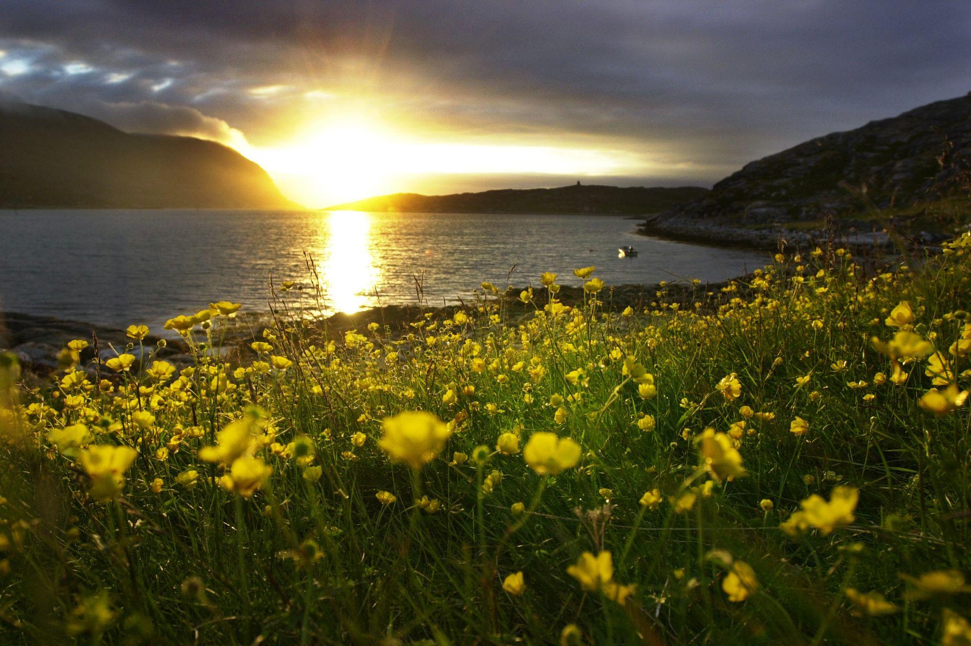 VARMT: Norges nordligste fylke kan oppleve temperaturer over 20 grader noen steder, mener meteorologen.