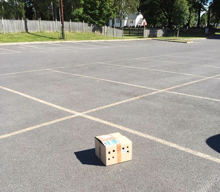 FUNNET: Pappesken ble funnet slik på denne parkeringsplassen. Ifølge Dyrebeskyttelsen Lillestrøm og omegn var den tapet igjen.