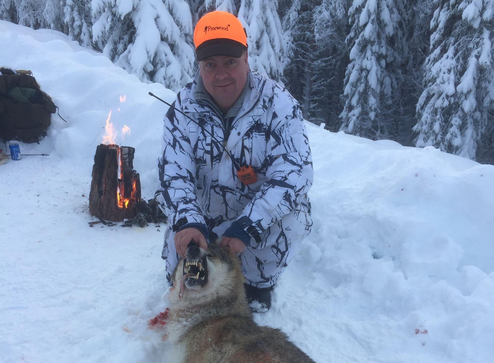 JAKTER I ULVESONEN: Arne Sveen er jaktleder for Åmot jakt- og fiskeforening, og leder jaktlaget som jakter på Julussaflokken. Her fotografert med alfahannen som ble skutt tirsdag. Han forteller at han opplever hets i sosiale medier for deltakelsen i jakten.