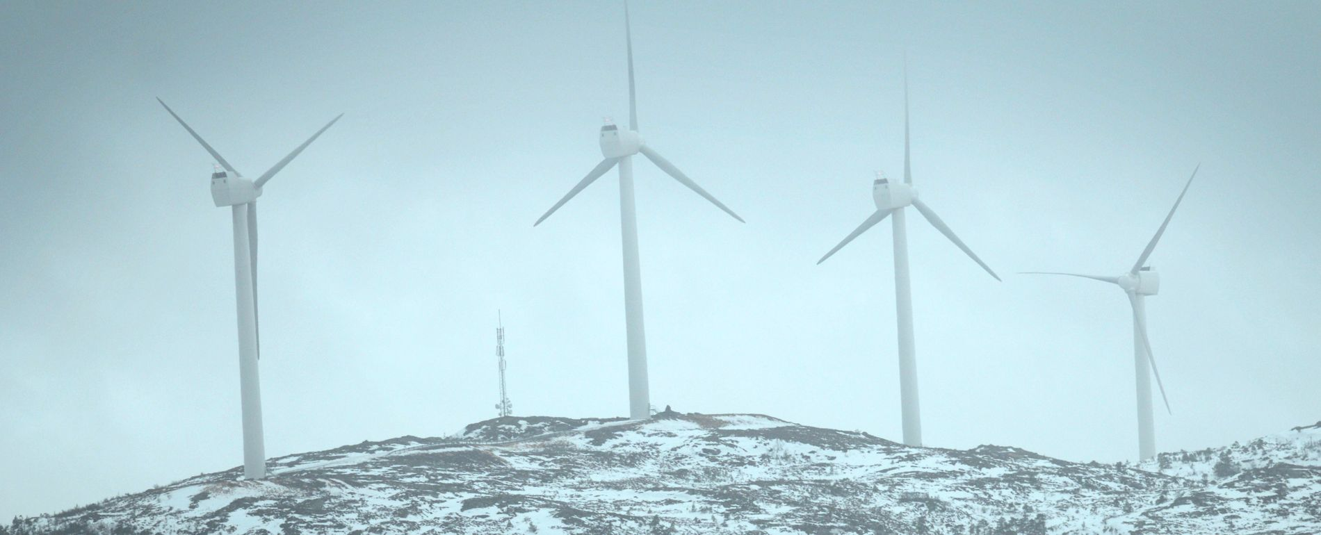 GRØNT SKIFTE: Hundhammerfjellet vindmøllepark i Nord-Trøndelag. Fremtidige vindmølleparker betyr jobbmuligheter både for elektrikere og ingeniører.