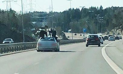LEKER MED LIVET: To unge menn på taket av en bil i fart på E6 retning Sverige. Det er uklart hva de skulle der, men øyenvitner har en teori.