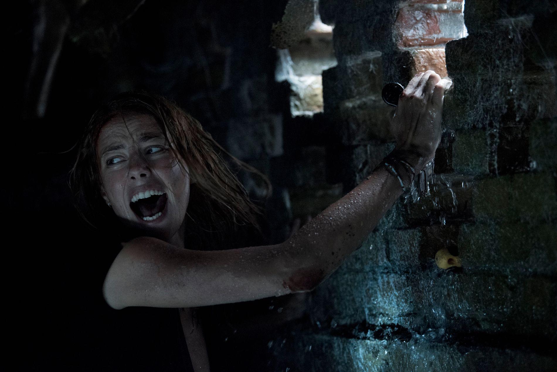 GLEFS: Kaya Scodelario i «Crawl».
