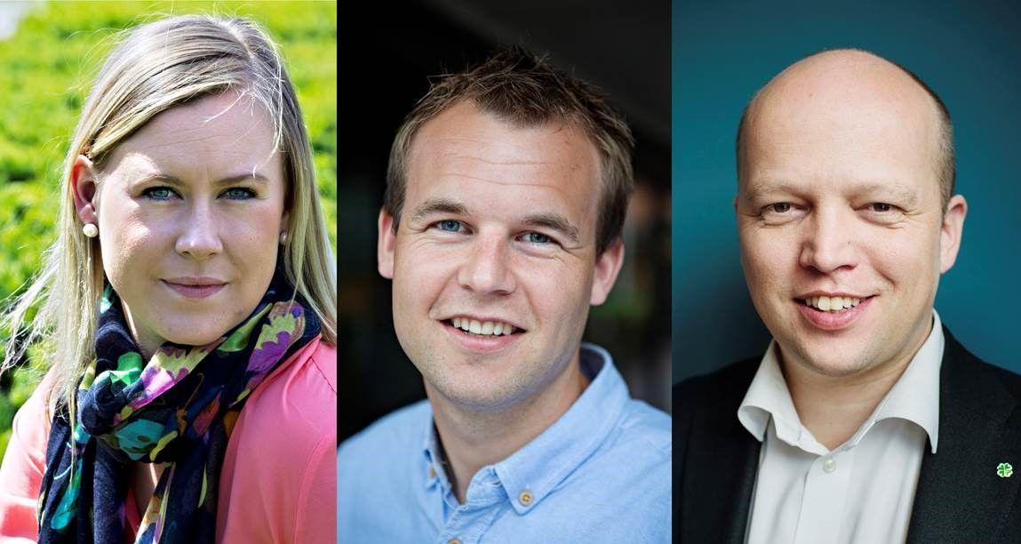 KREVER HANDLING: Fra venstre Lene Vågslid (Ap), Kjell Ingolf Ropstad (KrF) og Trygve Slagsvold Vedum (Senterpartiet).