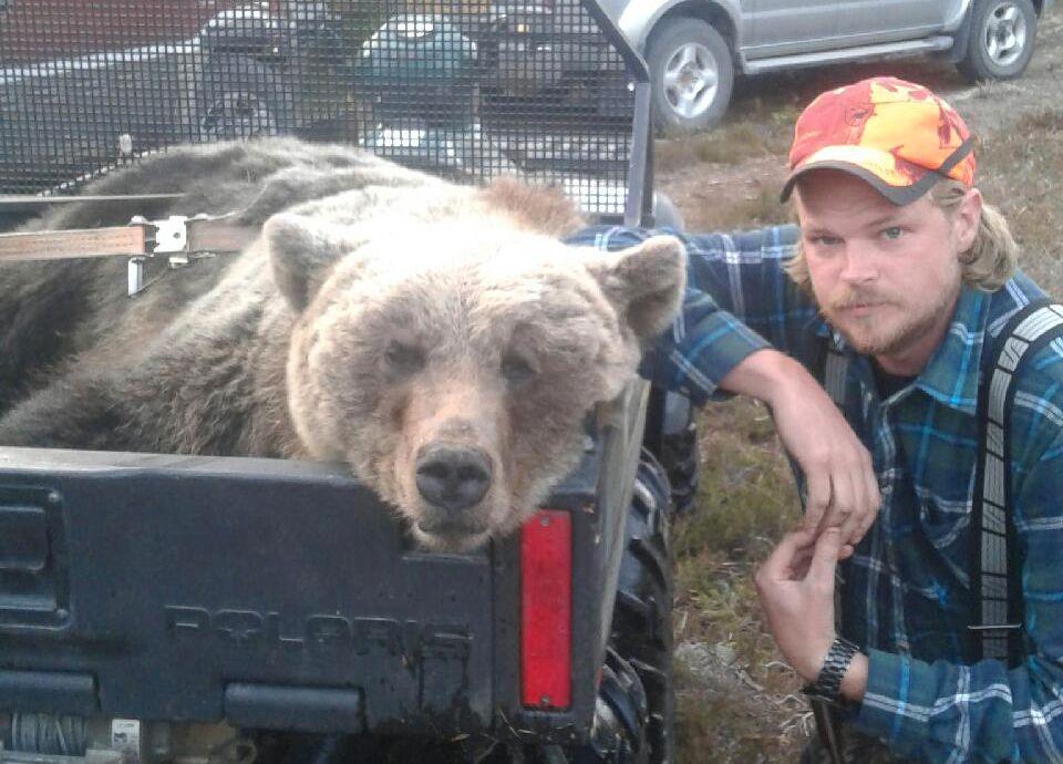 LØP FOR LIVET: Kent R. Olsen (35) var ute på jakt i Dalarna i Sverige søndag da han forteller at han fikk en bjørn etter seg og måtte løpe for livet. Her er bjørnen klar til å fraktes til obduksjon ved Statens veterinæranstalt.
