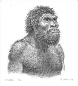 FORTIDSMANN: Slik kan eieren av Skalle 5 ha sett ut, for rundt 1,8 millioner år siden. Illustrasjon: J.H. Matternes
