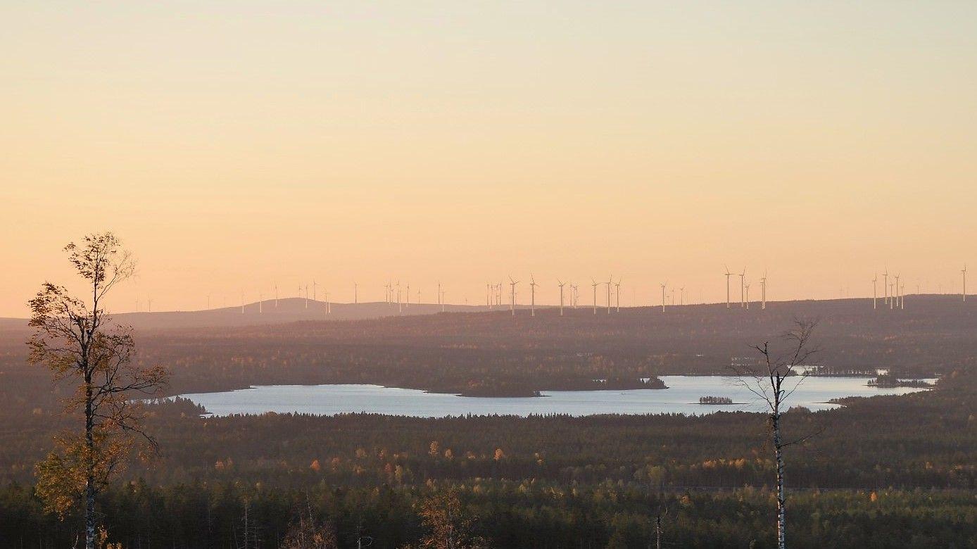 VINDKRAFT: Svevinds «Markbygden Ett»-vindmølleprosjekt i Nord-Sverige er tredje trinn i første utbyggingsfase i det enorme Markbygden-prosjektet. Når alt er ferdig vil vindkraftanlegget ha 1.101 vindmøller som til sammen produserer 10 terawattimer årlig.