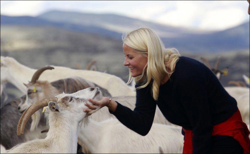 «SNAKKER» SAMMEN: Det er ingen tvil om at kronprinsesse Mette-Marit får god kontakt med dyr hun møter på sin vei. Foto: Lise Åserud/Scanpix