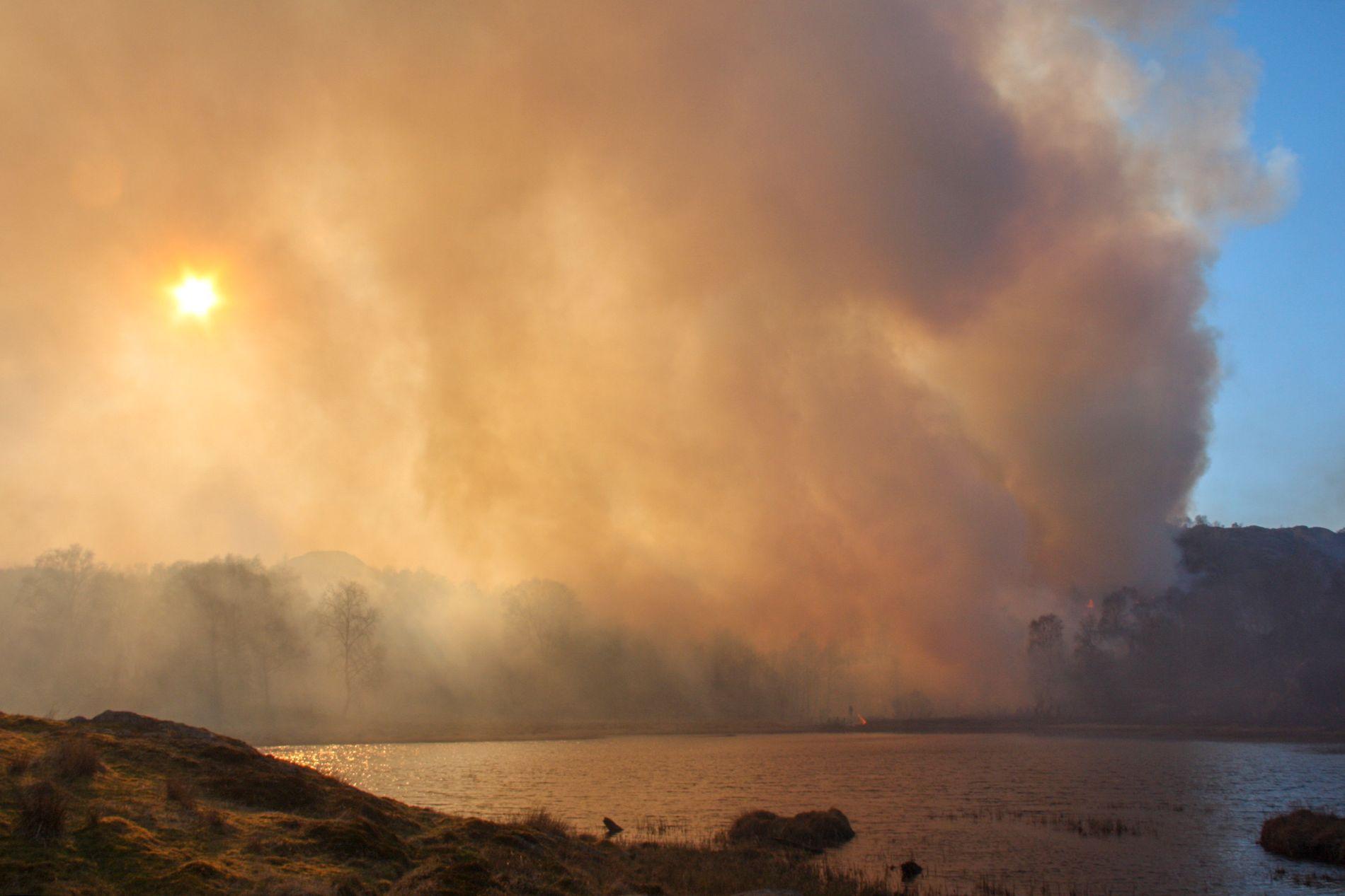 FORBUD: Det er svært tørt på Sørvestlandet og noen steder er det innfør forbud mot flatebrenning og bråtebrenning. Her fra brannen i Tysvær som herjet lørdag og søndag.