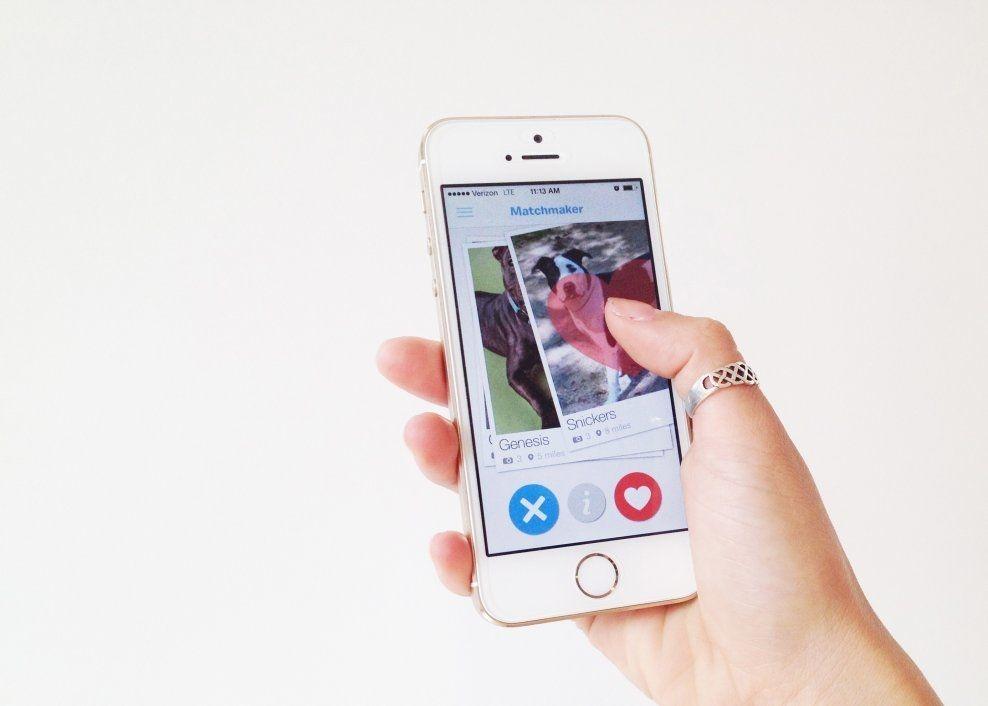 PASSER HUN(D) FOR DEG? Som på Tinder sveiper du bildene på skjermen enten til venstre eller høyre som en måte å si «ja» eller «nei».