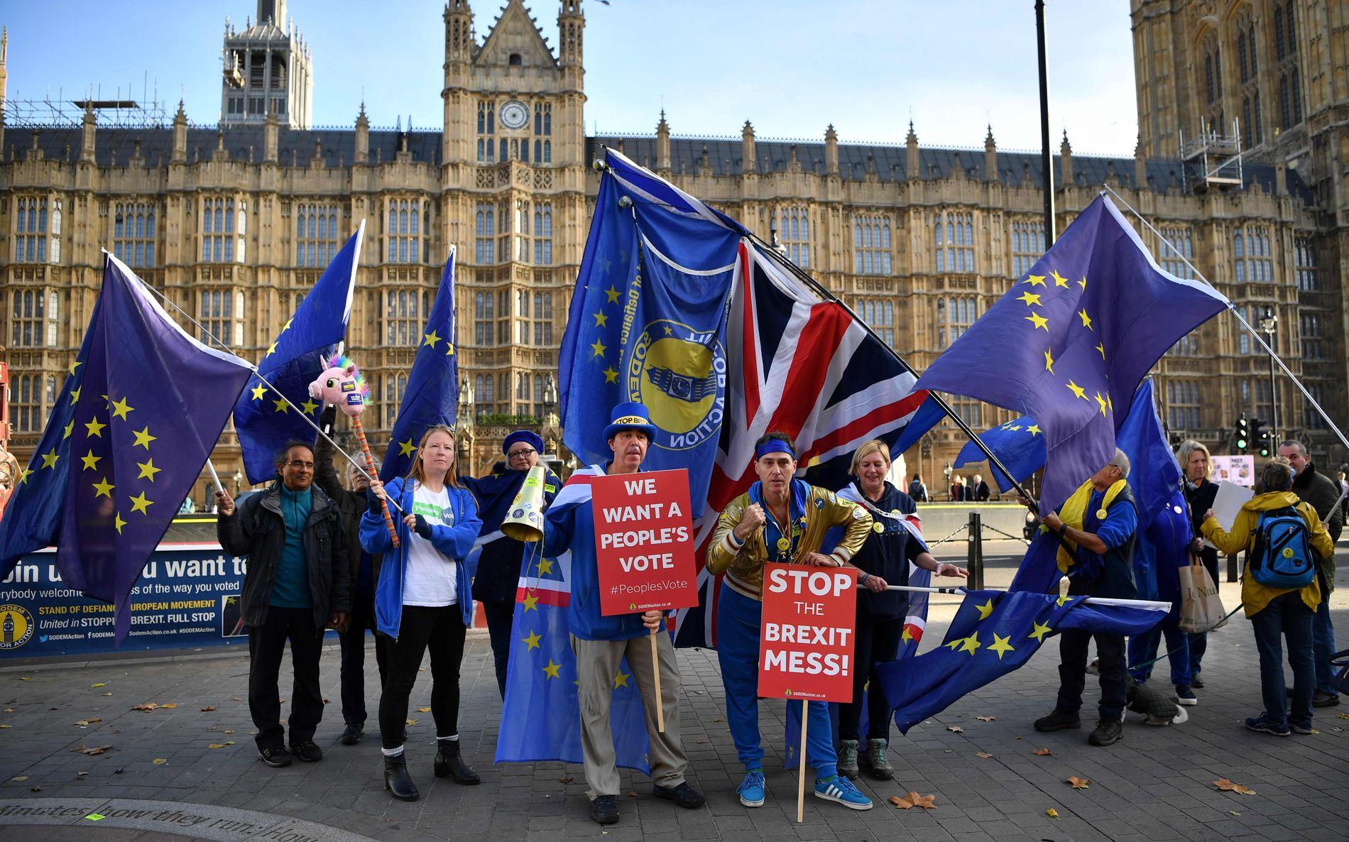 KONTROVERSIELL UTMELDING: Britiske EU-tilhengere demonstrerer utenfor parlamentet i Westminster etter at Storbritannia og EU kom til enighet om skilsmisseavtalen onsdag.