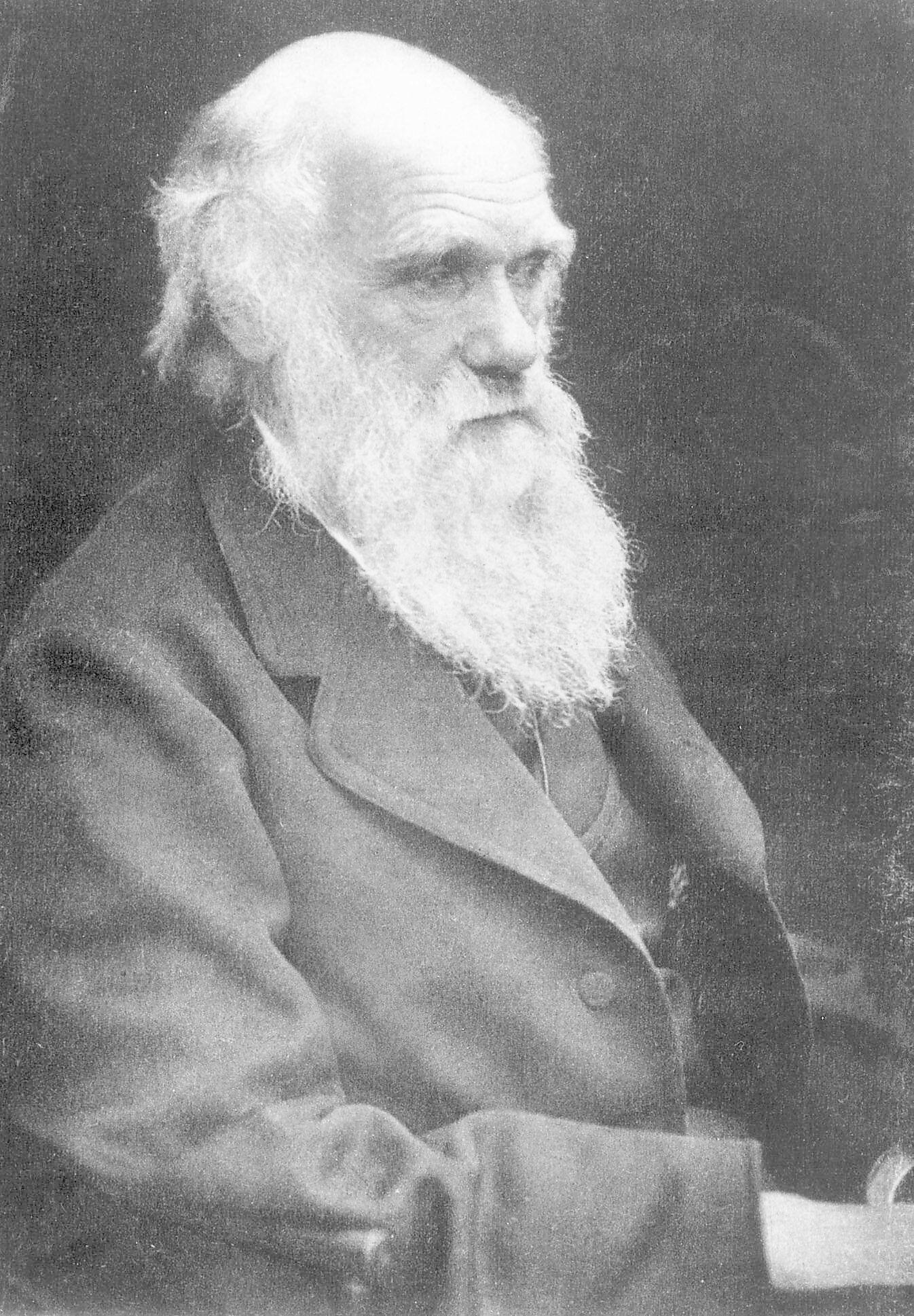 EVOLUSJONSLÆRER: Charles Darwins bok fra 1859, «Om artenes opprinnelse gjennom det naturlige utvalg», regnes som en av tidenes viktigste bøker.