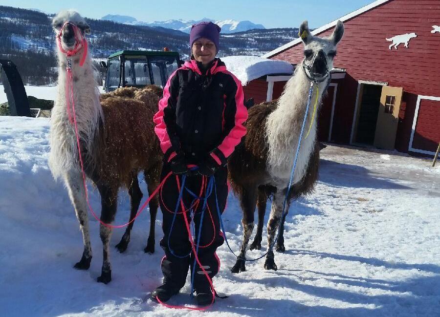 KJÆLEDYR: Berit Aasnes Hofsøy koser seg med lamaene Reidar (2) og Bjarne (8). Foto: PRIVAT