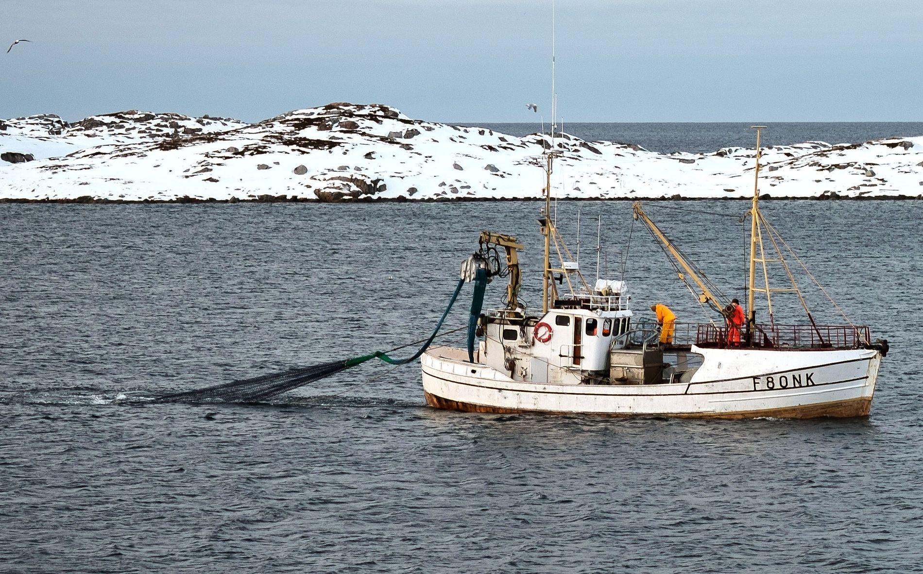 """TORSKEFEST: Fiskebåten """"Nytind"""" på vei til land - tungt lastet med rekordfangst."""