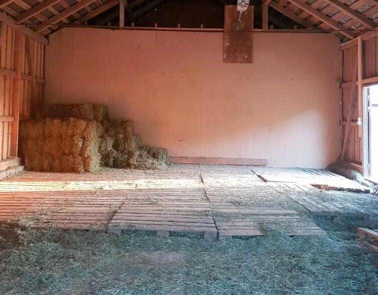 STJÅLET: Her lå halvannen tonn med grovfôr som ble stjålet. Pia og Hanne anslår at grovfôret hadde en verdi på 13.000 kroner.