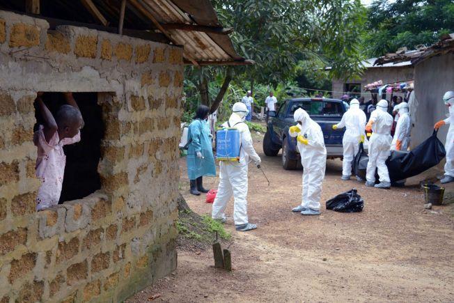IKKE NÅDD TOPPEN: Ekspertene tror vi langt ifra har sett enden på ebola-epidemien. WHO forventer at 20.000 vil bli syke. På bildet ser en nabo på helsearbeiderne i Røde Kors som bærer ut et lik i den lille byen Banjol, 30 kilometer fra Monrovia.