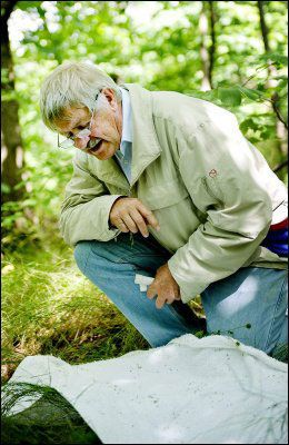 ADVARER MOT STORINNRYKK: Insektsforsker Reidar Mehl. Her leter han etter flått utenfor Fredrikstad i 2007. Foto: JON OLAV NESVOLD/VG
