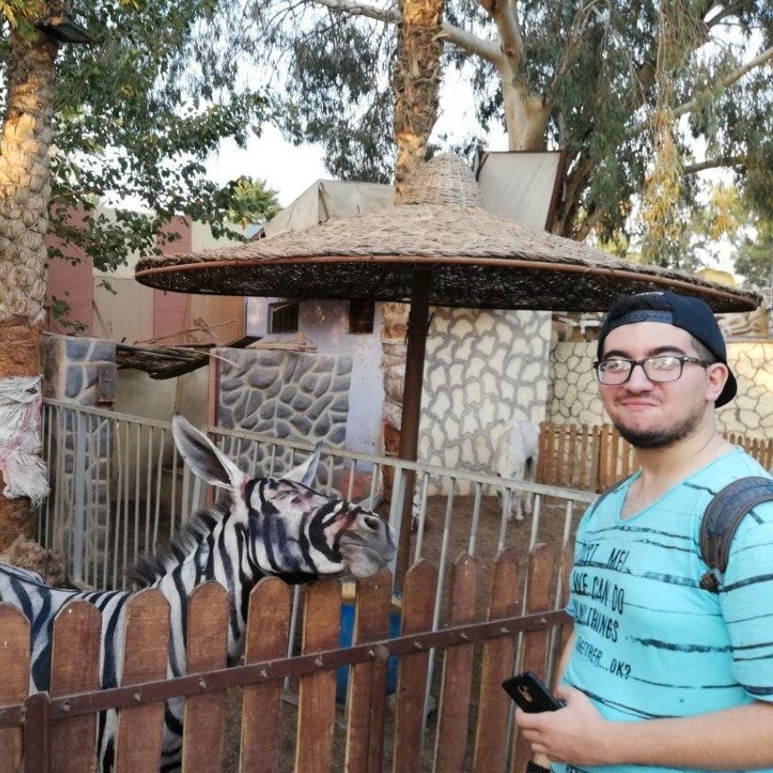 FOREVIGET «SEBRAEN» I KAIRO: Mahmoud Sarhan tok bilde av dyret han traff på i dyrehagen i Kairo.