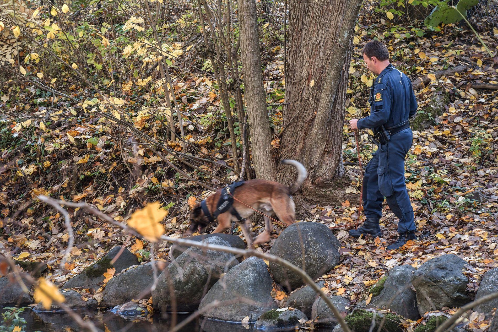 FLERE FUNN: Politiet har gjort flere funn ved undersøkelser av området fra Frognerparken og til Skøyen.