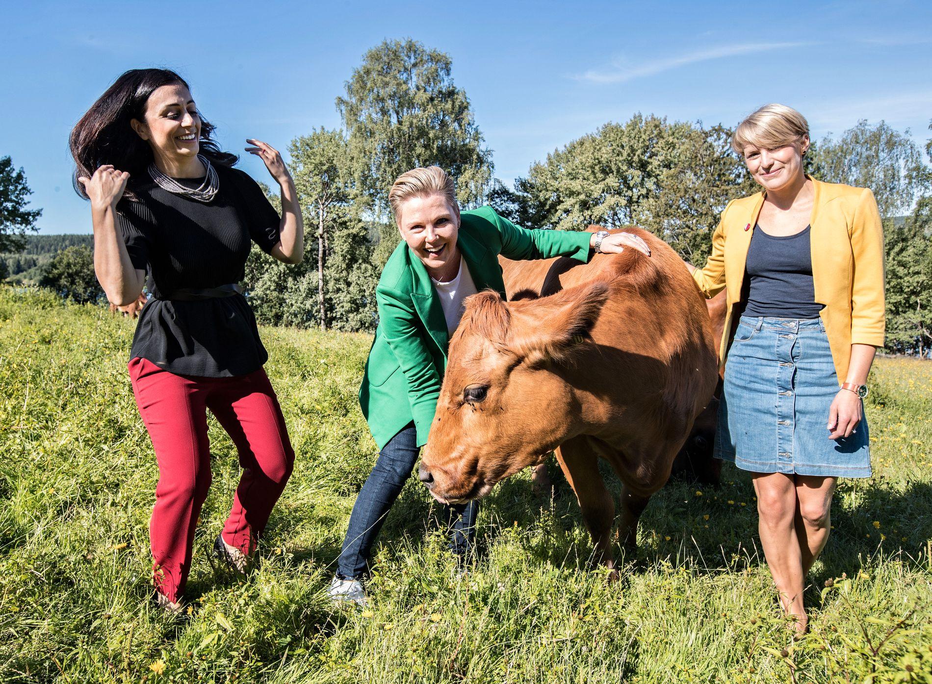 FRA DISTRIKTENE: Hadia Tajik (Ap), Anne Beathe Tvinnereim (Sp) og Kari Elisabeth Kaski (SV) er alle oppvokst i små kommuner. Nå vil de styrke norske lokalsamfunn.