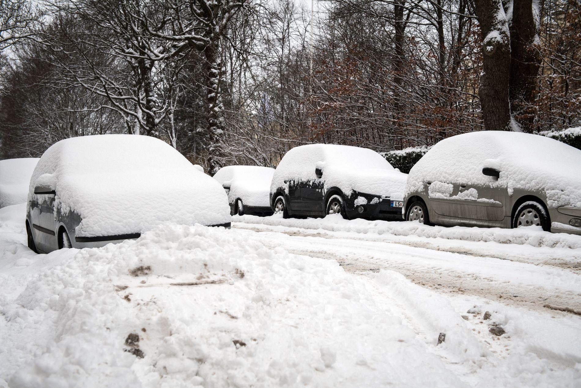 KALDT: Kuldeperioden kan vare i flere uker fremover, viser prognoser.