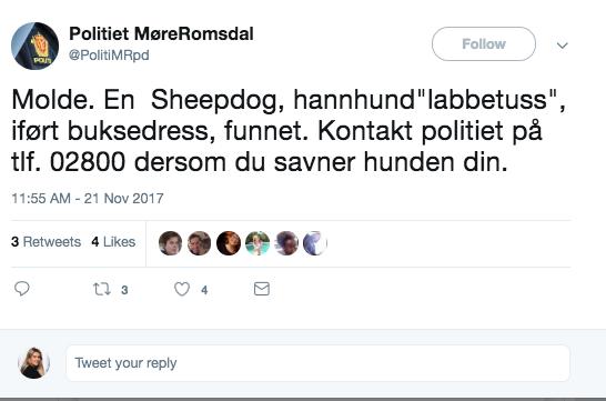 ETTERLYSNING 2: Buster har satt politiet i Møre og Romsdal i arbeid tidligere.