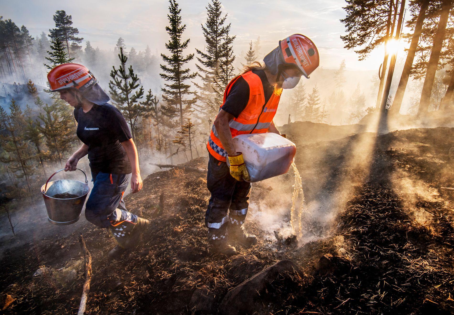 KALT INN: Sivilforsvaret jobbet iherdig med å slukke skogbrann ved Elgsjø på Notodden torsdag.