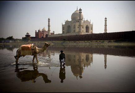 Utrolige India