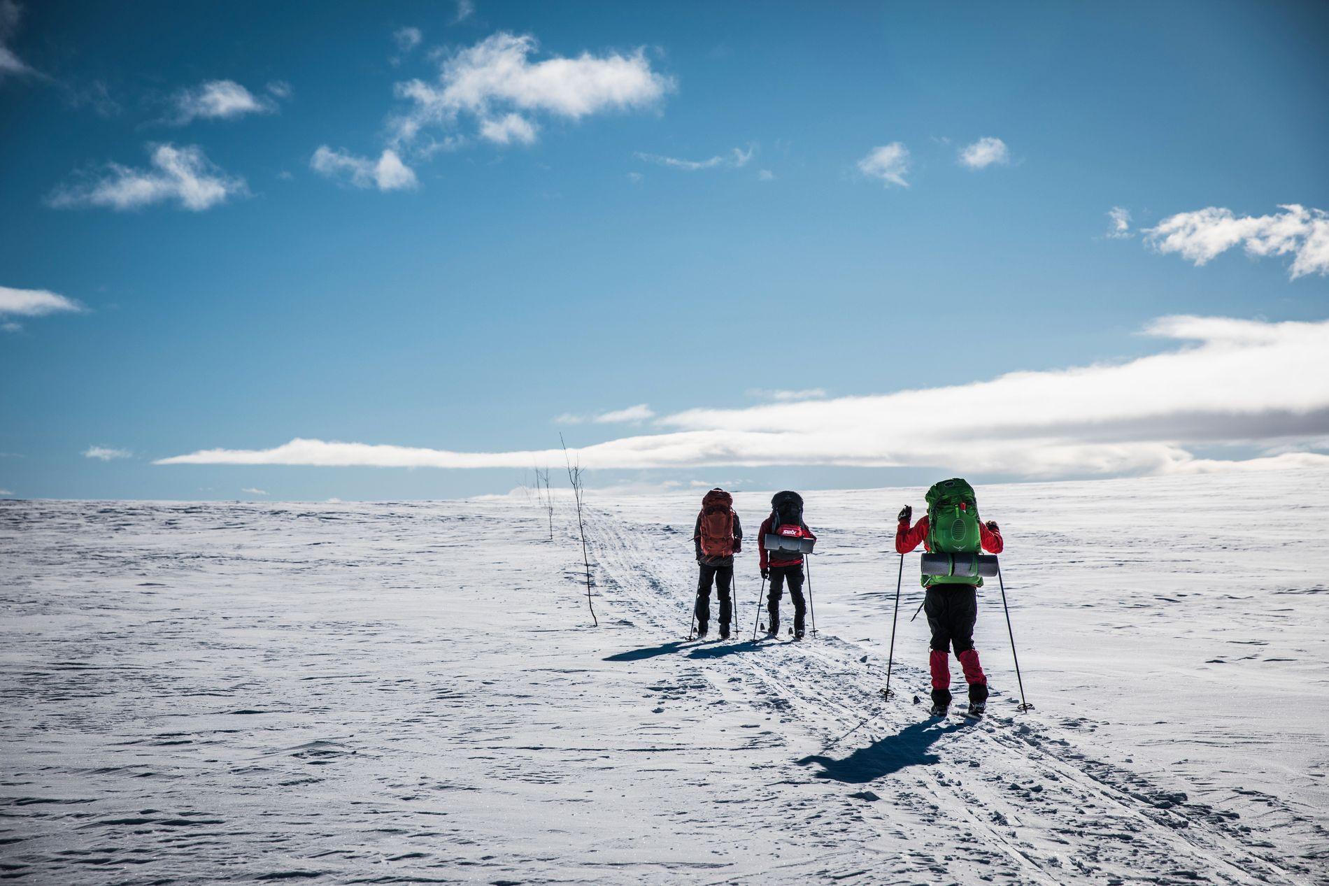 SKI: Alt ser ut til at det vil bli gode muligheter for å stå på ski i store deler av landet en lang stund fremover. Bildet er tatt på Hardangervidda ved en tidligere anledning.
