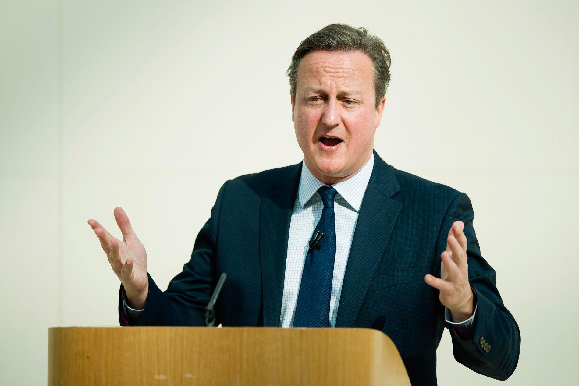 VIL BLI: Storbritannias statsminister David Cameron advarte mot en Brexit under en tale i British Museum mandag.