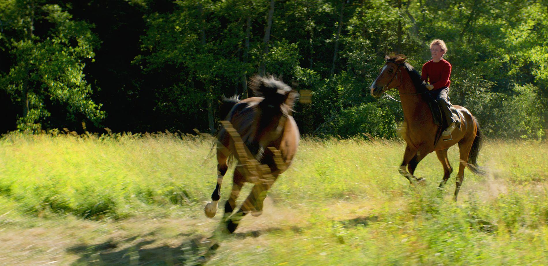 SOMMEREN MED HESTENE: Jon Ranes som den unge Trond Sander i «Ut og stjæle hester».