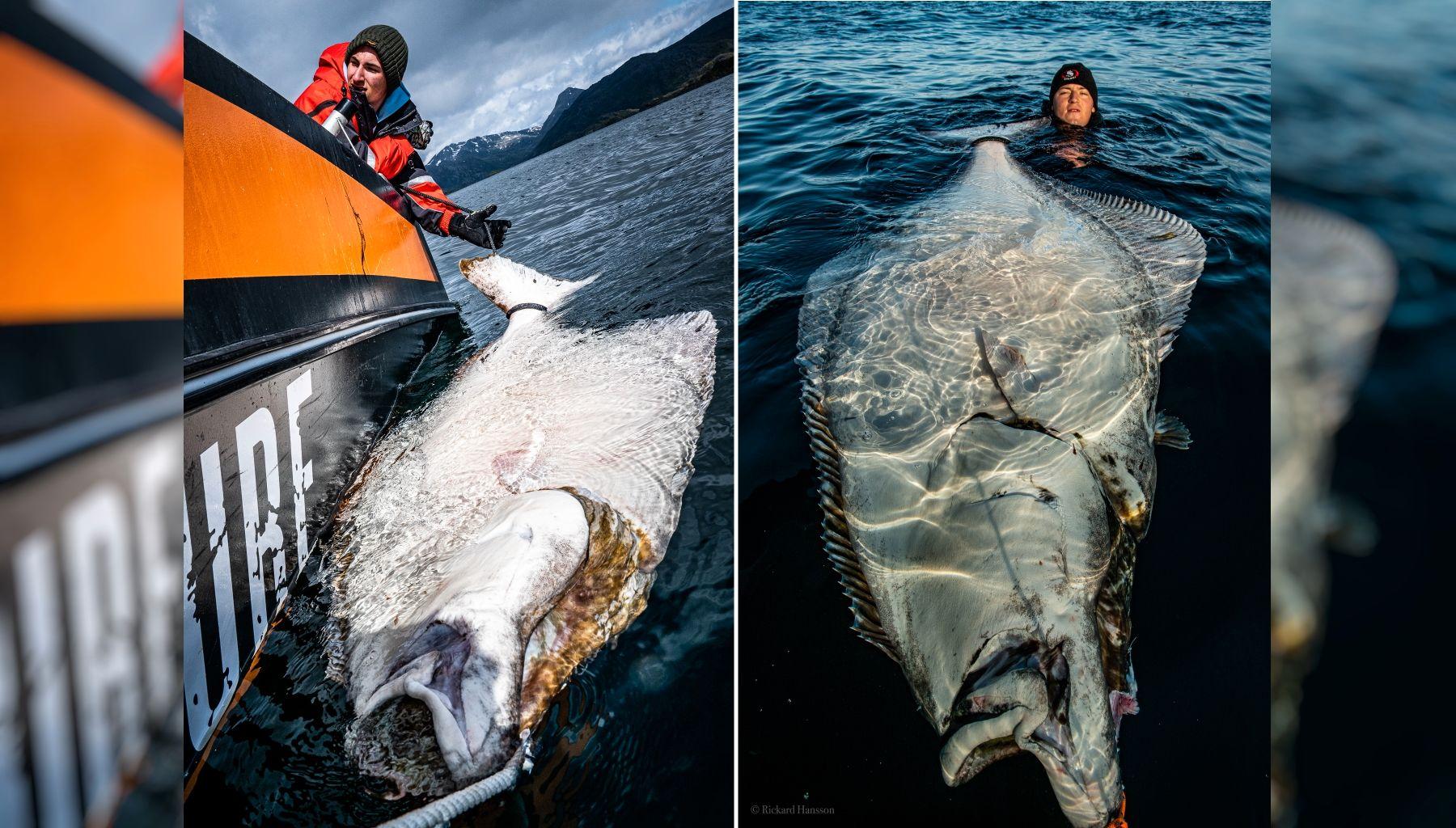 MEGAKVEITE: Det ble fiskelykke for Bilal Saab onsdag ettermiddag.