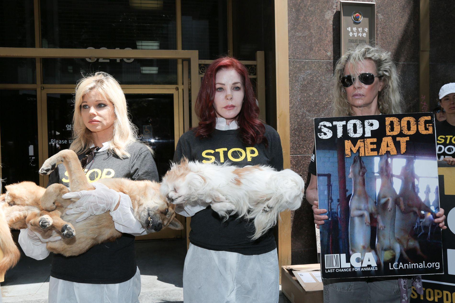 DOMONSTRASJON: Skuespiller Donna D'Errico, Priscilla Presley og Kim Basinger var blant dem som demonstrerte utenfor Sør-Koreas konsulat.