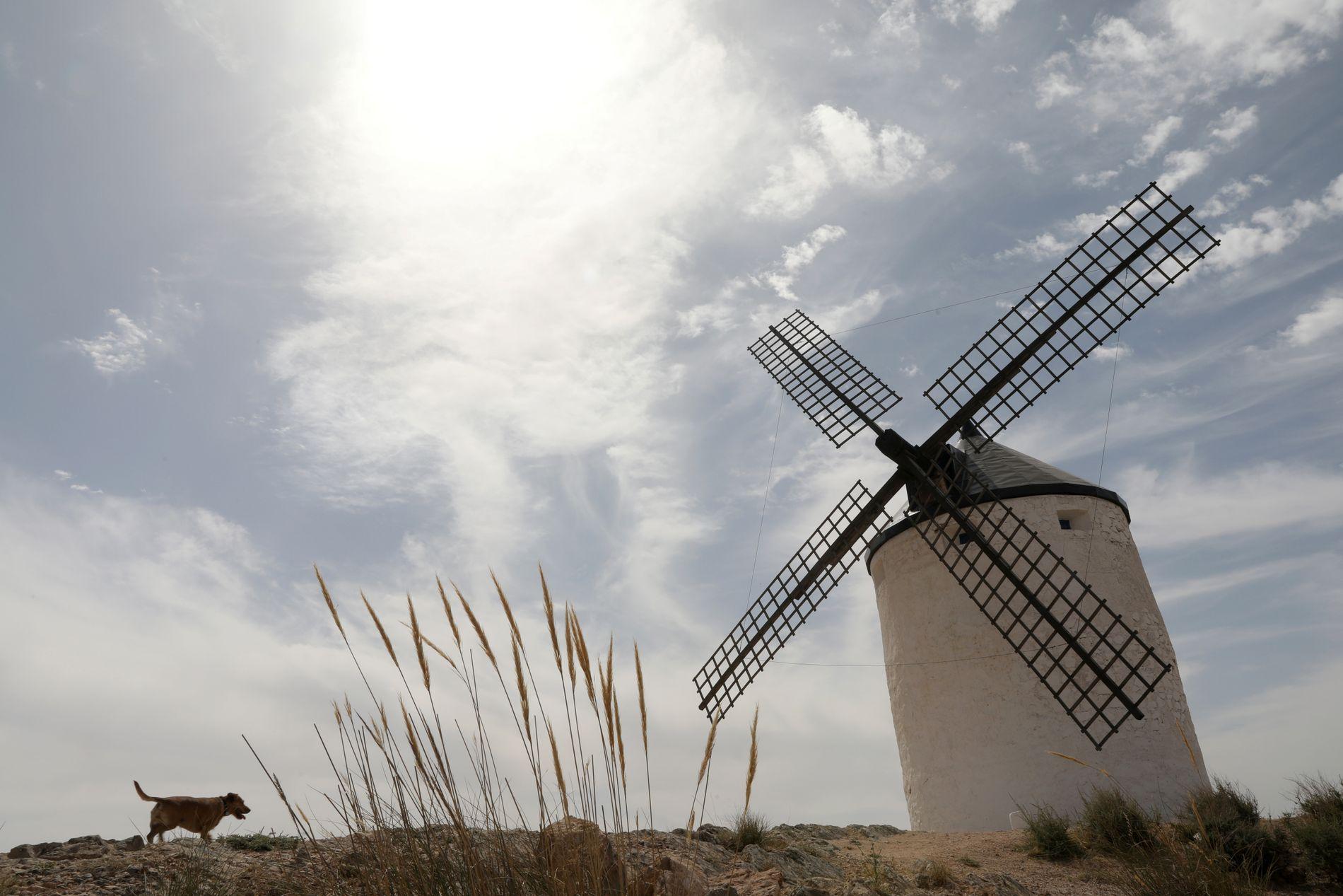 SOLA STEIKER: I Spania, som i store deler av Europa har varmen virkelig satt seg. Her fra Consuegra i sentral-Spania.