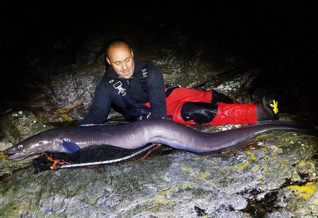REKORD: Her er Artur Klavins med havålen på 25,65 kilo fra oktober 2017.