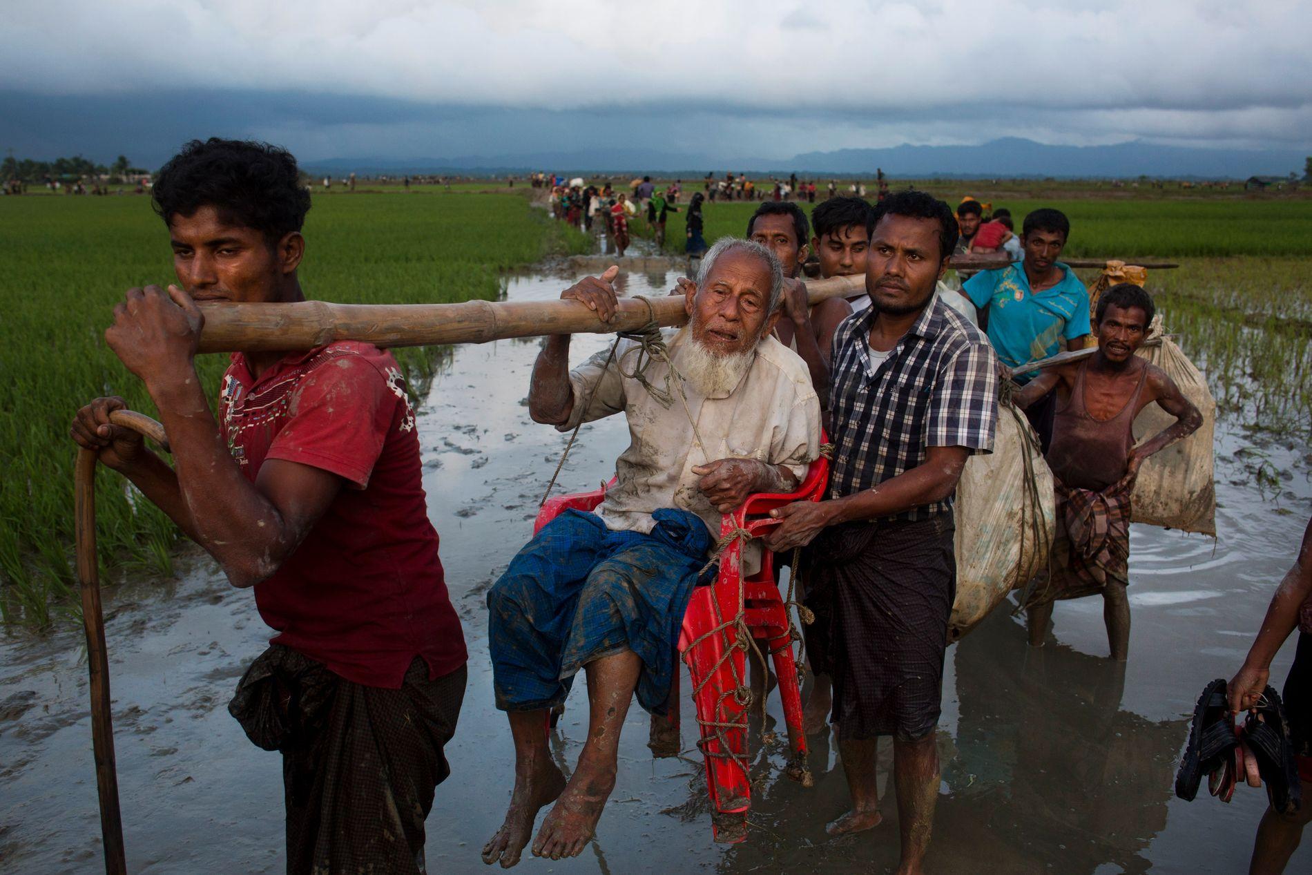 OVER GRENSEN: En eldre mann bæres over en risåker etter å ha krysset grensen over til Bangladesh.