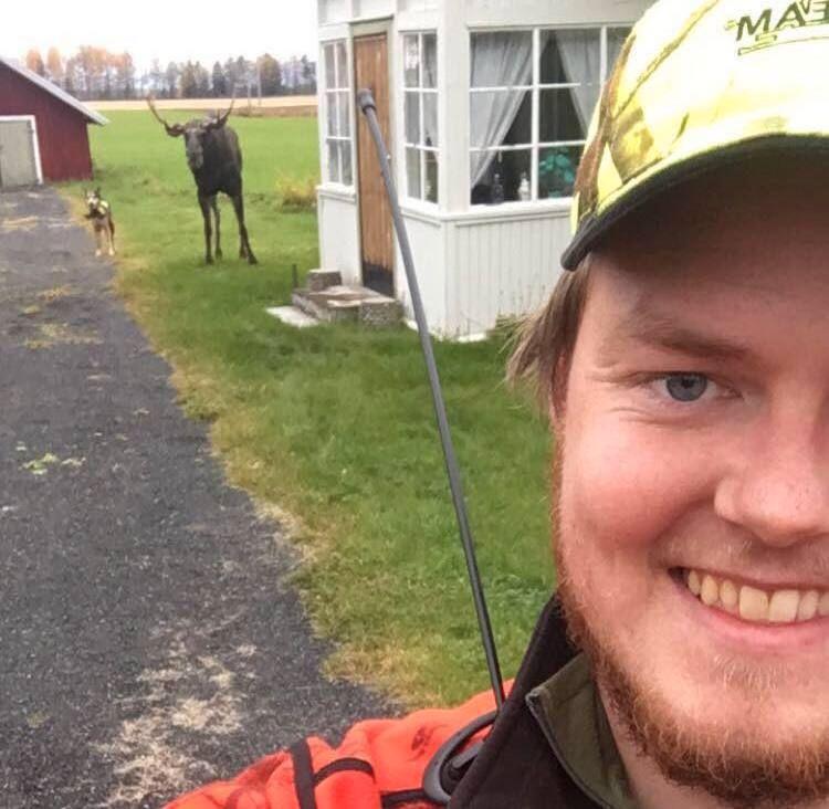 LÅVESTRØKETS KONGE: Denne sekstaggers elgoksen virket å trives i lag med hunden Varg og jegeren Jan-Tore Myrvang Kjos (23).