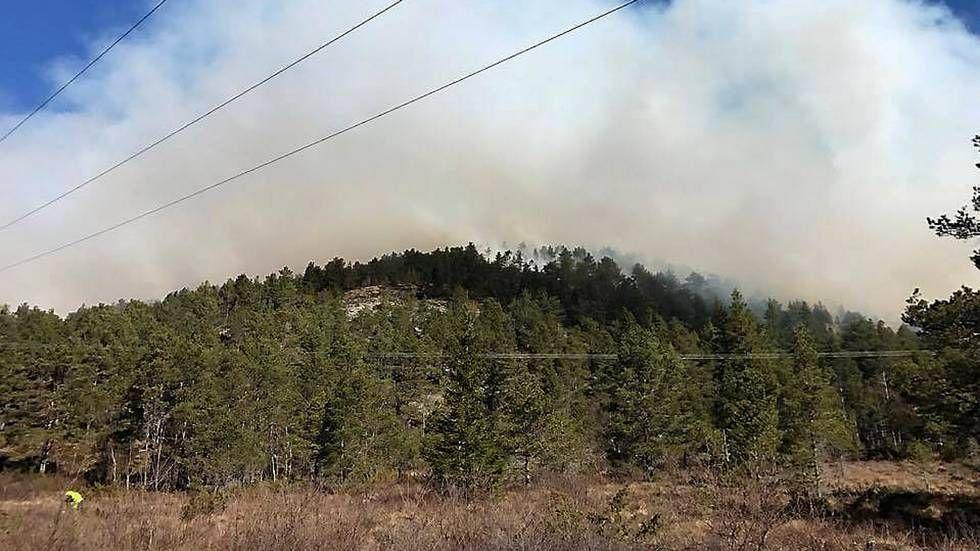 BRANN PÅ OTTERSØYA: Patruljene på stedet har antydet at brannen har et omfang på 500 ganger 300 meter.