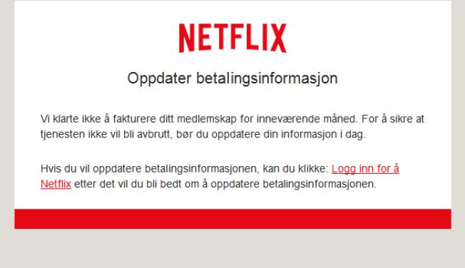 FEIL NETTSIDE: Mottar du en e-post fra det som skal være Netflix, så er det svindel. Lenken som er vedlagt fører deg til et annet nettsted, svært likt orginalen, og ber deg om å endre betalingsinformasjonen din.