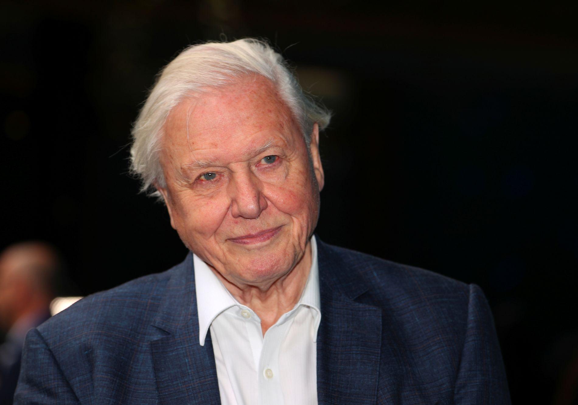 FREMDELES AKTIV: David Attenborough på premieren på «Blue Planet II» på BFI i London i september 2017.