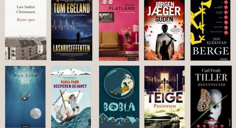 TI NOMINERTE: Her er bokhandlernes favorittbøker i 2017.