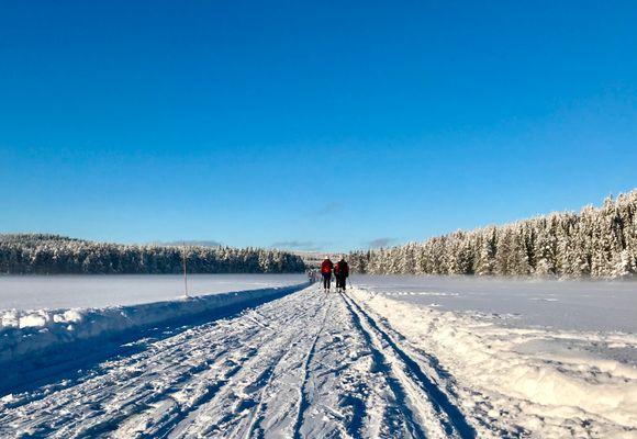 Her er det best skiføre akkurat nå