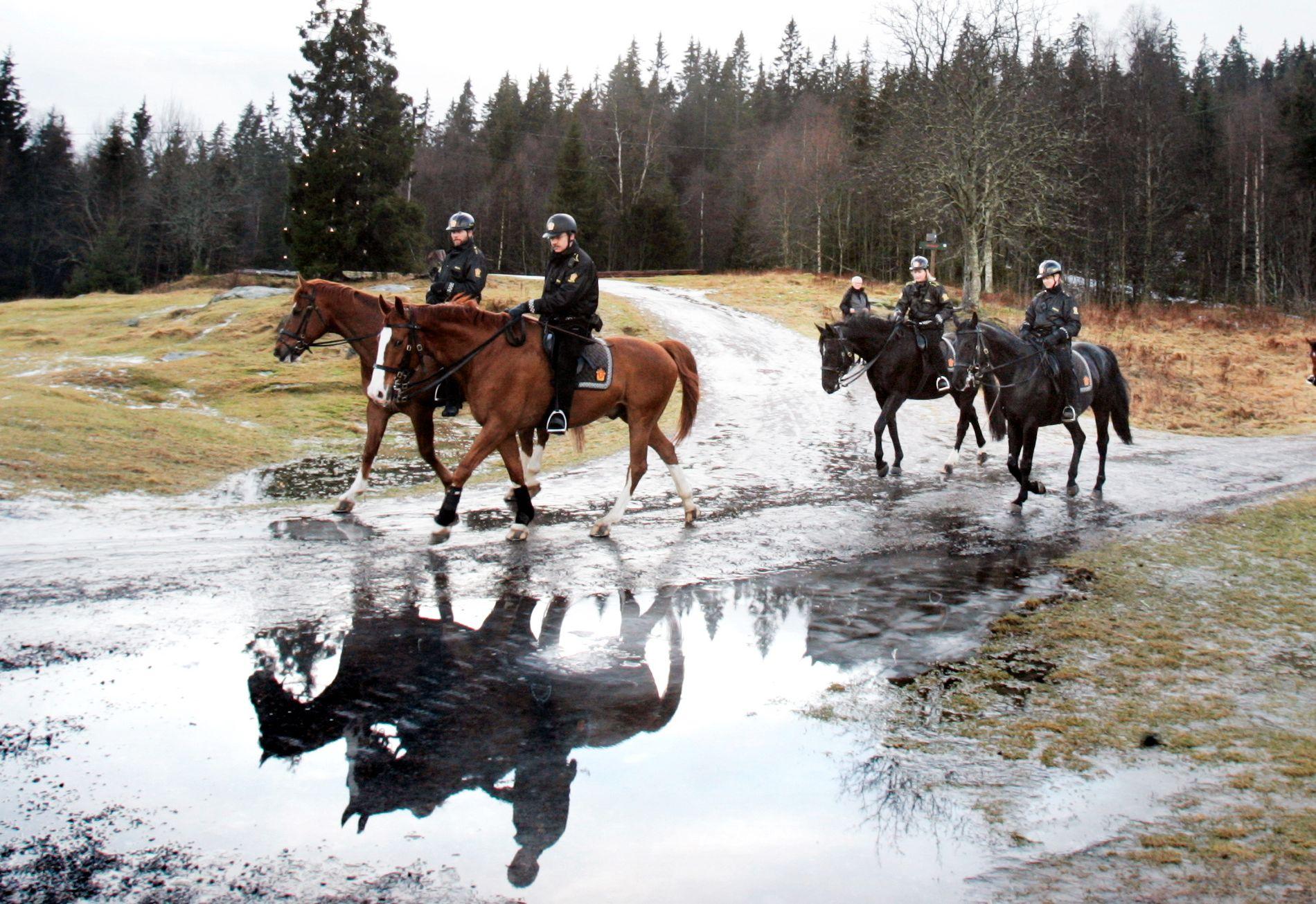 VINTER ELLER IKKE VINTER: Det spøker for gode gamle vintre i lavlandet i sørlige del av Norge. Her er politi til hest i januar utenfor Ullevålseter i Oslo – på barmark.