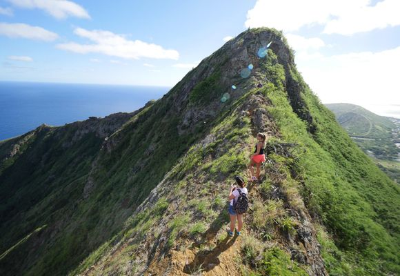 Seks toppturer på Hawaii