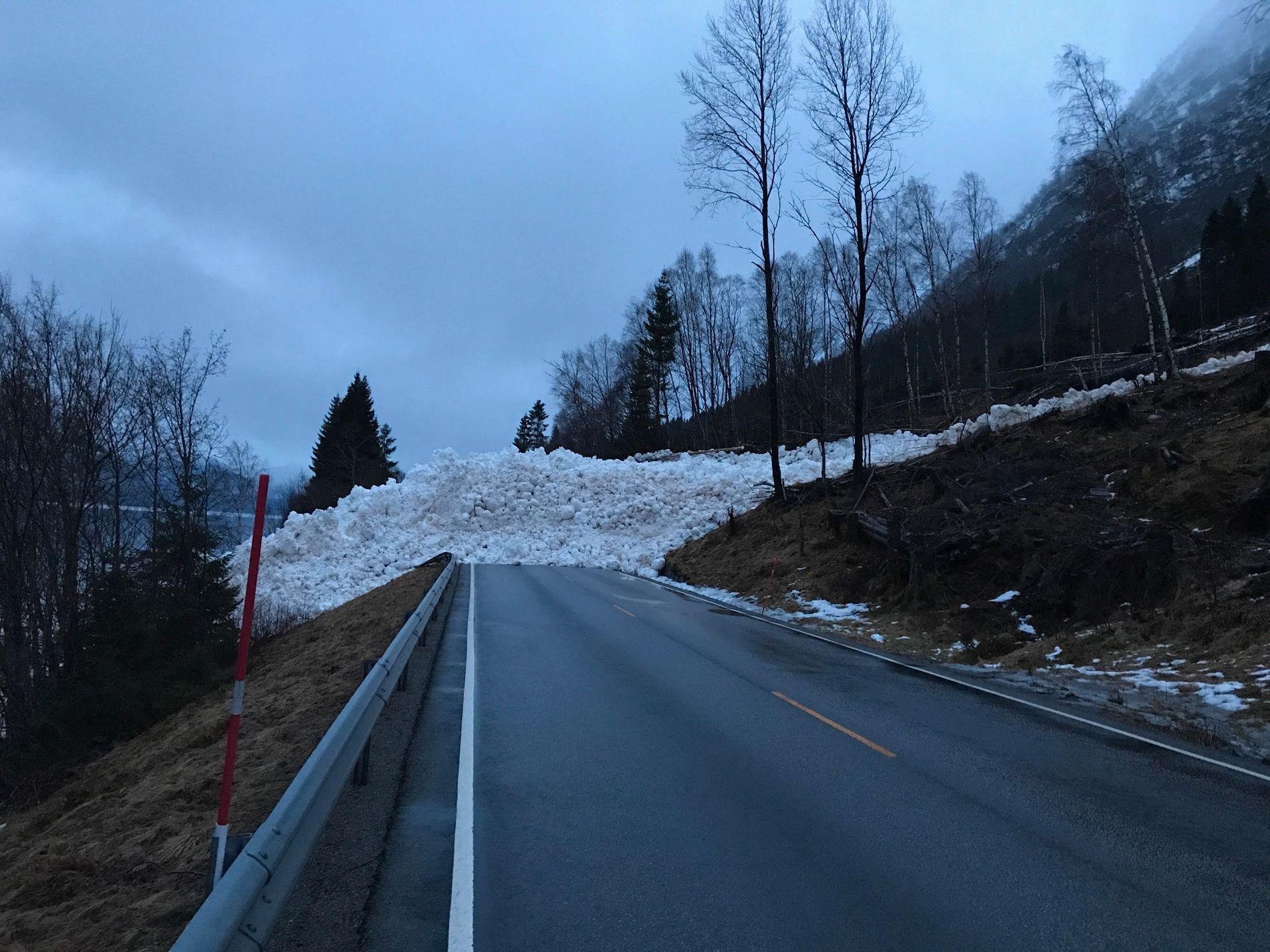 HØYT: Snøskredet ved Hornindalsvatnet sperrer E39 og anslås å være 7–8 meter høyt.