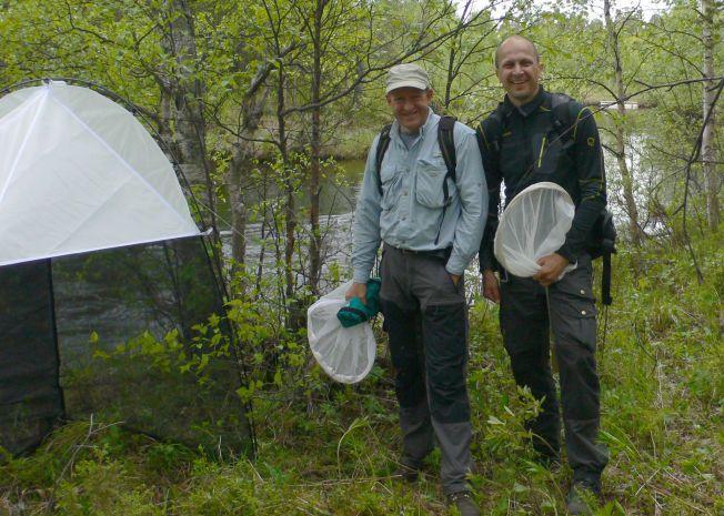 FORSKER PÅ MYGG: Førsteamanuensis Geir Søli ved Naturhistorisk muesum i Oslo og professor Torbjørn Ekrem ved NTNU jakter på mygg.